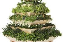 Plant Pyramids For Your Garden! / Are you looking to build or install a plant pyramid in your yard or garden?  Here are plant pyramid ideas for style of garden.  Fill your pyramid with herbs, vegetable or flower plants!