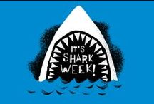 Shark Week!!!! / Sharks just swim and eat and make baby sharks and that's all that they do./   Matt Hooper - Jaws / by Gail Jenkins