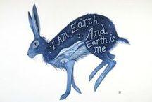 bunnies & rabbits / by adik ko
