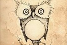 Owls / Owls' pictures and drawings