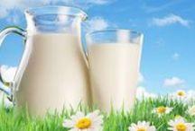 Θρεπτικά συστατικά / Θρεπτικά συστατικά: Οι χρήσιμες ουσίες των τροφών: Πρωτεΐνες, υδατάνθρακες, λίπη, βιταμίνες και ανόργανα στοιχεία.