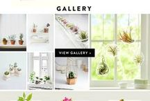 Design:: Creative Website Inspiration