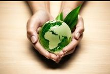 Save the World! / The Malaysian palm oil industry is sustainable with Good Agricultural Practices in place.