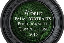 Photography Competition / World Palm Portraits Photography Competition 2016 is the 4th annual international photography competition.  For info, go to www.palmoiltv.org/events