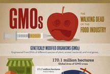 No GMO / Palm oil has no GMO and comes from a non-GMO crop.