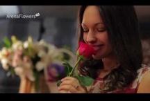 Valentine's Videos
