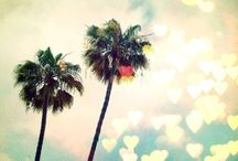 California Dream /  | I love California |
