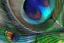 Moc koloru / Power of color