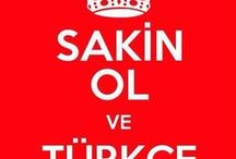 Turkçe