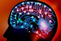 neurociencias mim