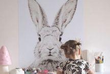 TR All things Rabbit