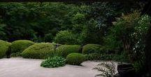 Japanese Garden 日本庭園 / 日本庭園、素晴らしいです。でも回遊式庭園は、夏、蚊が絶対沸きそうw  そう言う意味では枯山水の方が良さげです。ちなみに、日本三名園では、蚊に刺されなかったけど・・・。