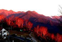 """本州 """"Mikawa/Tenryu/Suruga"""" / 三河湾と静岡県です。大崩海岸は廃墟マニアにとっても聖地のようです。富山の親不知の太平洋版ですね。規模は、違いますけどね。南アルプス山系の山が太平洋になだれ込む地形ですの当然、断崖絶壁です。"""