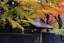 """本州 """"Oga/Hachimantai"""" / 男鹿半島、八幡平と周辺のエリアです。男鹿半島の海岸美はヤバいです。田沢湖は、日本一の深さだか透明度だかの湖です。秋に行くといいんですよねぇ、田沢湖は。また、角館も素晴らしい所です。なんか、田沢湖、八郎潟を舞台にした壮大な民話だか神話だかを昔、聞いたような覚えあります。東京から、秋田新幹線「こまち」でチョロっと来れる時代になりました。すごいですねーーw"""