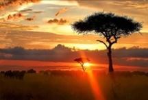 Africa 2015 / Morrocco, Botswana, Tangiers, & Zanzibar. I can't wait! Just get me there!
