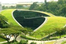 Green Roof - Telhados Verdes / Cobertura verde, Cobertura vegetal, telhado jardim, ecotelhado, green roof