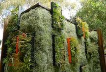 Paredes Verdes - Jardim vertical - Green Wall / Paredes Verdes - Green Wall  - Jardim vertical