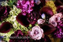 Weddings- Once Upon Jewel Box / Jewel tones / by Kimberly Taylor