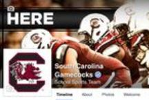 GamecocksOnline Connect / Take a peek at what our social media and digital media platforms are doing! www.gamecocksonline.com / by Gamecock Athletics