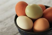 Recipes : Dairy Egg & Meat / Recipes for the ice cream and cheese, eggs and meat you can find at the market.