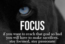 -> Inspiration