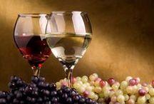 Vinoloog voor een dag