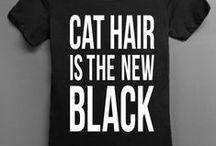 M E O W / CATS!