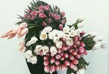 Blumenstrauß.