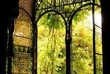 Sevilla / Azahar, Andalucía, Light, Fino, Joy, Horses, Beauty.