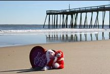 Valentine's Day Ocean City MD / Check out all the cool stuff going on around Ocean City MD fro Valetine's Day; Events, Specials, Dining, Dancing & More!   #valentinesday #oceancitycool