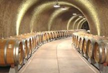 Tour a Wine Cave / Wine Caves