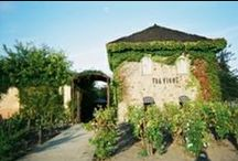 Top Rated Wine Country Restaurants