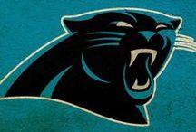 Carolina Panthers <3 / by Christi Collins