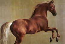 George Stubbs / Equine Artist / by Joanne Dorsey
