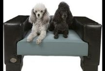 Chester & Wells Dog Beds / Chester & Wells manufacture stylish dog beds designed with both your pet and home in mind. See the range at www.chesterandwellsdogbeds.co.uk