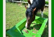 Horse Feeders / Welcome to our Horse feeders board where you will see British manufactured horse feeders. We specialise in the All In One Feeding Station which is the first corner feeder to have two buckets incorporated into it. See more at www.horsefeeders.co.uk