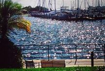 Get your sail on | Coconut Grove