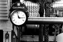 History | Coconut Grove