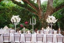 Villa Woodbine | Coconut Grove
