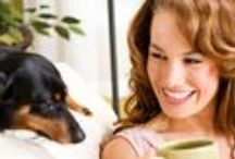Dog health tips / Tips on how to properly care for your dog's health