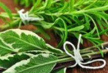 Herbe aromatique