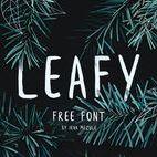 FONTS / Les plus belles typographies gratuites pour tes projets !