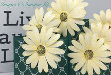 Stampin' Up! Tutorials to order on my website