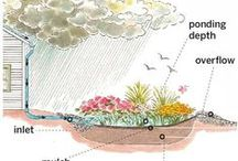 Rain Gardens to Swales for Water Quality Solutions / From swales to rain gardens, to pervious pavers, learn what you can do around your landscape to address big rain events/stormwater to prevent erosion and filtering runoff preserving our water quality