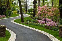 FL Yard Inspiration / Ideas to make our one acre yard fun, attractive, dog-friendly, bird-friendly