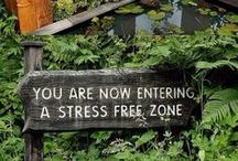 Zen Space / Inspiration for creating a stress free zone