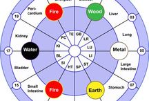 Health: Traditional Chinese Medicine / The Five Elements/Seasons: Fire/Summer ~> Earth/Late Summer ~> Metal/Autumn ~> Water/Winter ~> Wood/Spring ~>