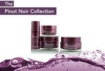 Vine Vera Resveratrol Pinot Noir Collection / Luxury skin care products inspired by Pinot Noir