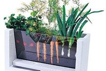 Jardinería y huertos