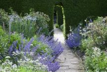 Gardens as Inspiration / Creating beauty, connection with the earth